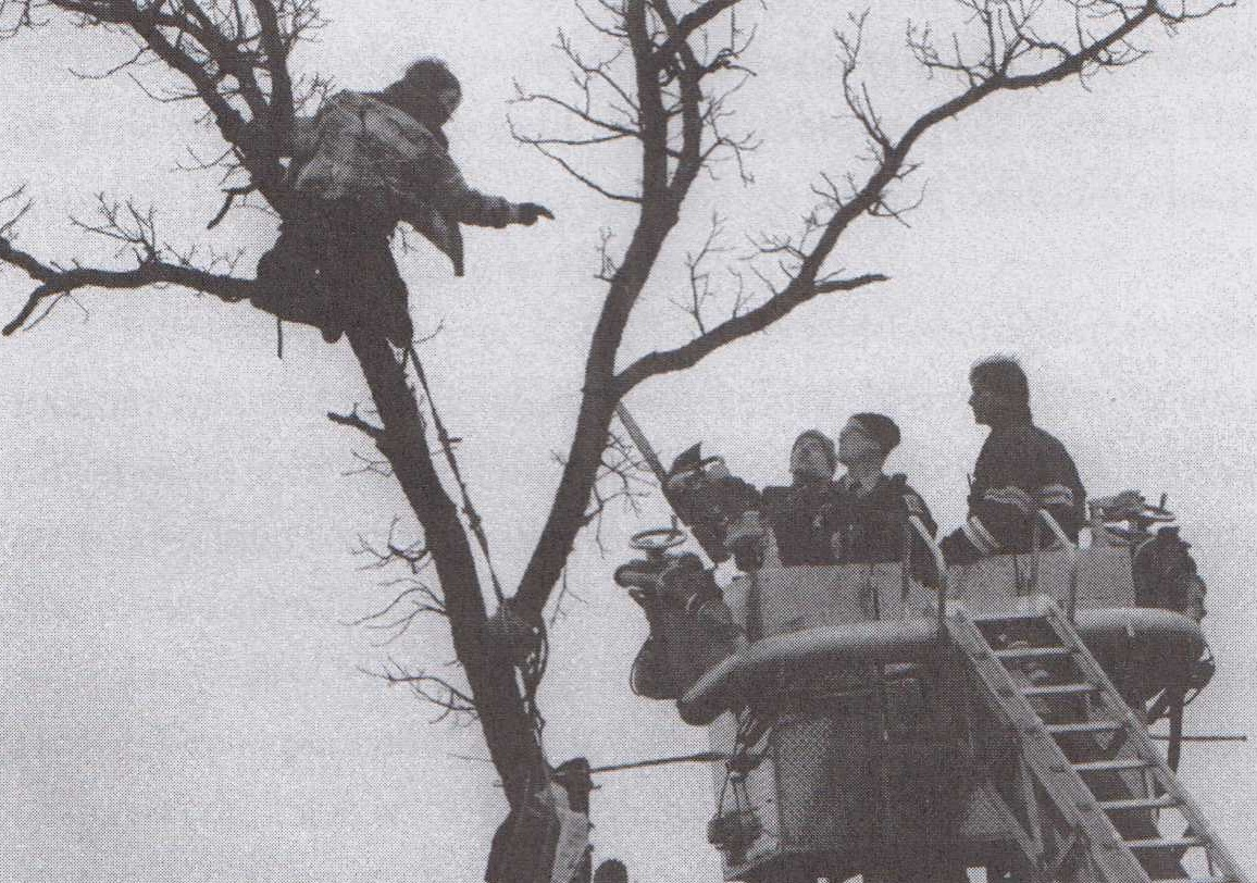 A protester holds on high in a tree, to the right are people, perhaps police, in a crane.